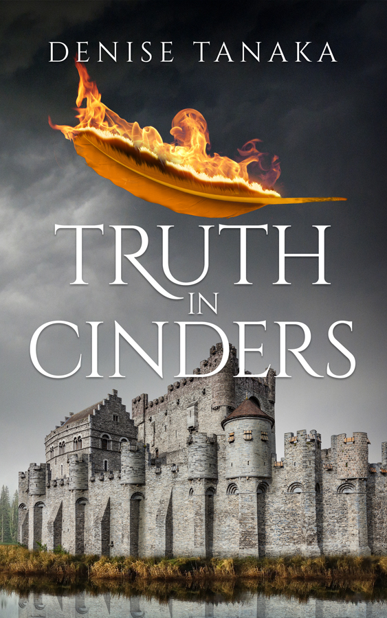 Romance Book Cover Questions : Truth in cinders books covers art